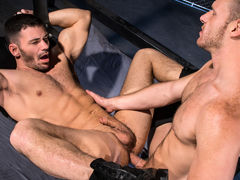 Muscled, hairy stud Brian Bonds has a big, girthy boner that requires sucking. Brogan Reed is up to the challenge and welcomes a vigorous face fucking. Thick spit appears as Brogan deepthroats Brian's shaft and sucks his hefty balls. To return the favor,